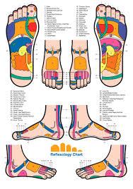Spine Map 31 Printable Foot Reflexology Charts U0026 Maps Template Lab