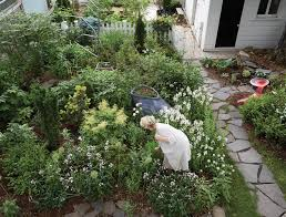 at home with artist and landscape designer paula hayes wsj
