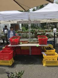 Market Stall Canopy by We Have Fun Every Week U2013 Maynard Farmers U0027 Market