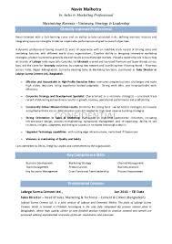 Sales Driven Resume Resume Navin Head Of Sales Marketing U0026 Technical