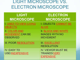 what is a light microscope used for microscopes ppt download