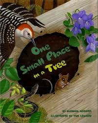 A Place Book One Small Place In A Tree Barbara Brenner Hardcover