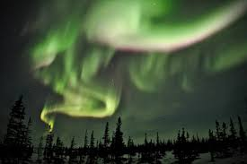 livestream the northern lights direct from manitoba canada