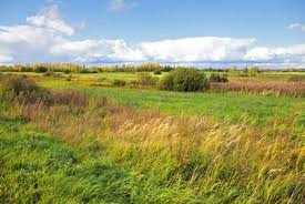 The Interior Plains Climate Interior Plains The Physical Regions Of North America