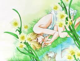 daffodil flower page 2 zerochan anime image board