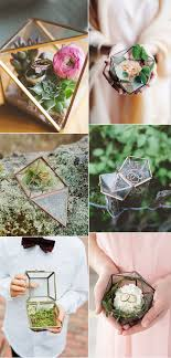 best 25 plant wedding favors best 25 terrarium wedding ideas on terrarium wedding