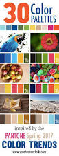 pantone 2017 colors 30 color palettes inspired by the pantone spring 2017 color trends