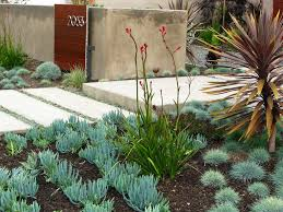 Drought Tolerant Backyard Ideas Drought Tolerant Garden Design Ideas Landscape Contemporary With