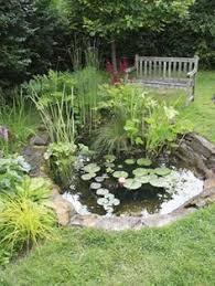 Retention Pond In Backyard 59 Best Pond Swale Water Retention Images On Pinterest Garden