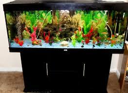 Tropical Fish Home Decor Fish Tank Best Biorb Fish Tanks Images On Pinterest Home Decor