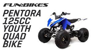 125cc blue quad bike