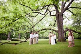 outdoor wedding venues az cheap outdoor wedding venues in az wedding ideas