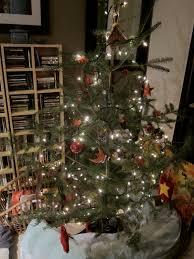 Organic Christmas Trees The Trashbasher