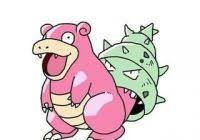 Slowbro Meme - luxury slowbro meme slowpoke memes create meme kayak wallpaper