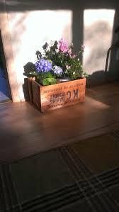 127 best flowers for garden images on pinterest gardening
