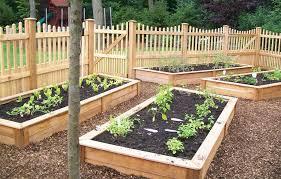 Beauty Backyard Vegetable Garden Design  Garden Ideas Best Tips - Backyard vegetable garden designs