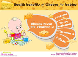 Benefit Of Cottage Cheese by Can I Give Cheese To My Infant