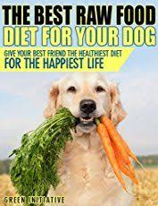 pros and cons of the raw diet for dogs dog pup and belgian malinois