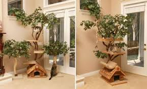 cat house designs indoor idea home and house with regard to