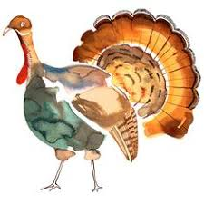 transparent thanksgiving turkey picture pinteres