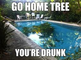 Pool Meme - really funny memes go home you re drunk
