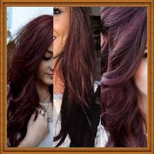 brown cherry hair color dark cherry brown hair hair pinterest cherry brown hair