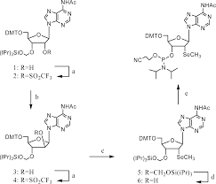 ijms free full text selenium derivatization of nucleic acids