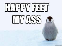 Happy Feet Meme - happy feet my ass miserable penguin quickmeme