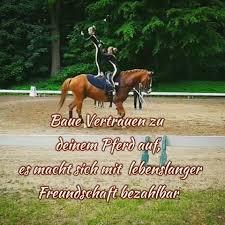 pferdesprüche deine pferdesprüche pferdetraeume instagram photos and