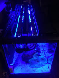 Aquarium Led Light Bar 4 X Reefbar Combo 1ft Aquarium Led Light Reef Bar 12