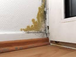 mietminderung bei schimmel im schlafzimmer mietminderung bei schimmel schlafzimmer schrank darf an außenwand