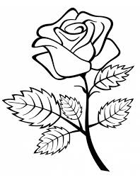 fiori disegni disegno di rosa da colorare per bambini con disegni di fiori