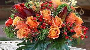 beautiful orange fall flowers the most beautiful flower 2017