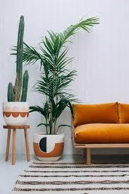 interieur et canapé plantes d intérieur et canapé orange en velours la déco a soif de