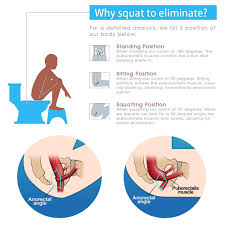 Bathroom Sitting Stools Honana Bx 926 Abs Nonslip Bathroom Stool Prevent Constipation