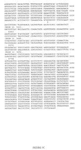 patent us20080166723 cdk5 genetic markers associated with