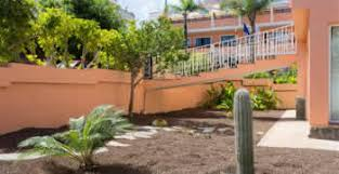Landscaping Columbia Sc by Desertscape Columbia Sc Chop Chop Landscaping Columbia Sc