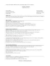 chronological resume exle hybrid resume exles skywaitress co