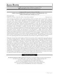 bunch ideas of resume cv cover letter financial controller cv