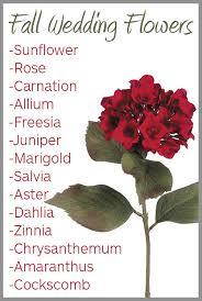wedding flowers list when are your wedding flowers in season wedding shoppe