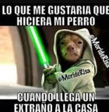 Memes De Star Wars - memes de star wars cómics amino