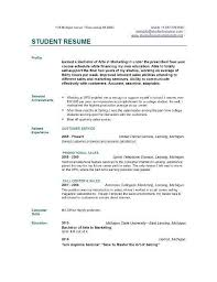 examples of resume profiles exciting professional profile