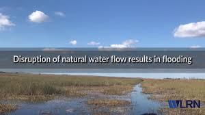 what we talk about when we talk about everglades restoration wlrn