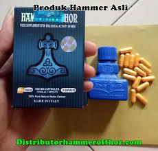 hammer of thor distributor resmi hammer of thor