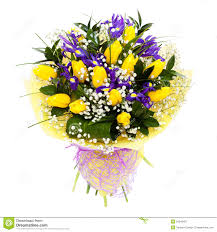 Wildflower Arrangements Tulips Isolated Flower Arrangement Bouquet Stock Photo Image