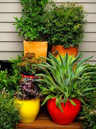 Summer Container Garden Ideas Container Gardening Balcony Garden Web