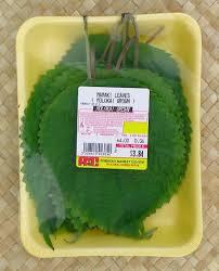 native hawaiian plants for sale tasting hawai u0027i with moloka u0027i chef james temple māmaki ancient