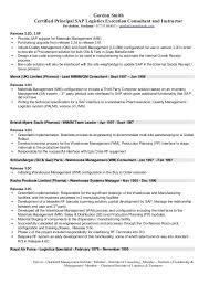 Logistics Resume Summary Sample Resume Logistics Resume Summary Examples Logistics Manager