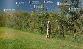 fruit tree garden layout here is how you make a living from a 4 acre permaculture orchard