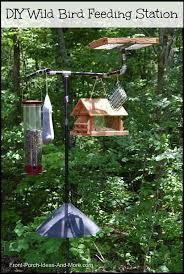 Backyard Wild Birds by Wild Bird Feeding Station Front Porches Porch And Bird